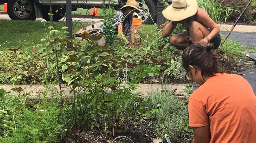 tending the garden women hard at work